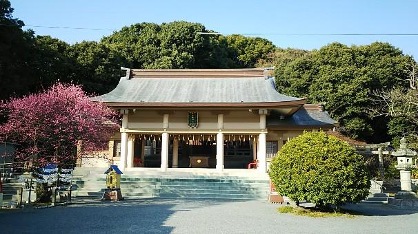 11 光雲神社 拝殿