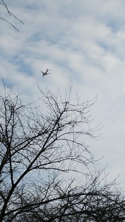 21 しょっちゅう飛んでる飛行機