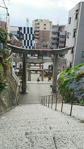 16 愛宕神社鳥居を見下ろして