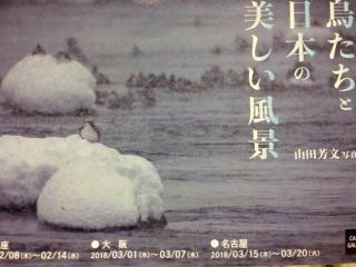 鳥の写真展