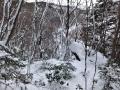 たっぷりの雪