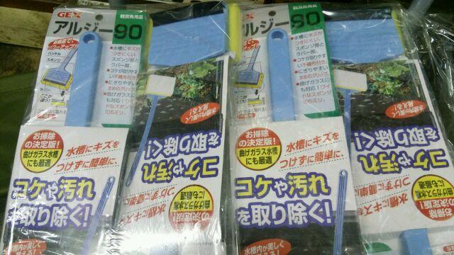 moblog_6203a89a.jpg