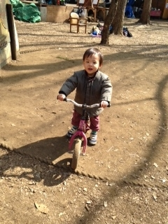 圭悟君自転車