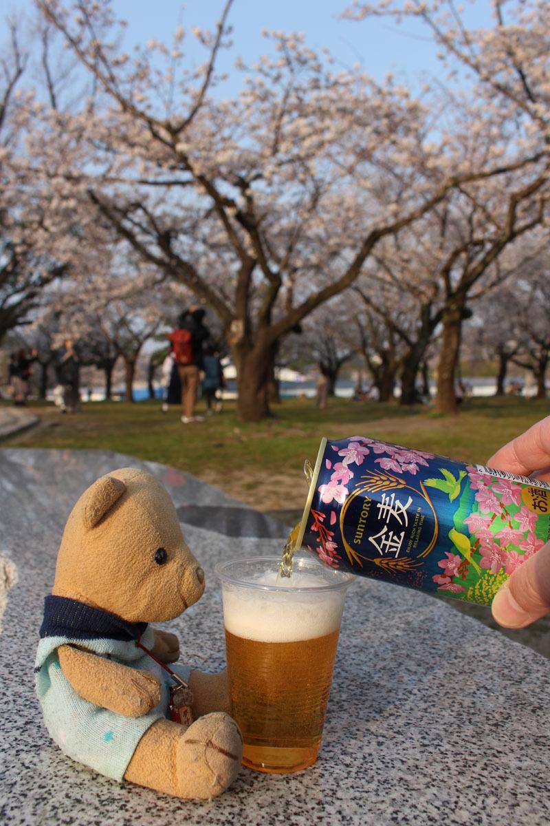 金麦(桜缶)を注ぐ 駿府城公園 180326