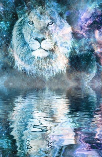 lion-2546801_640.jpg