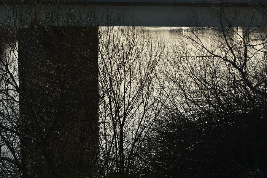 橋を照らす-4