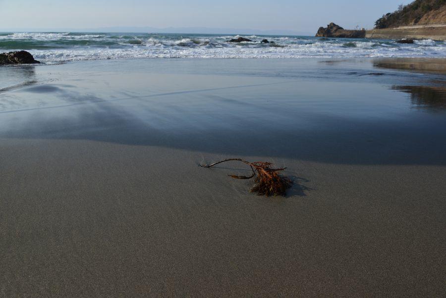砂浜にて-1