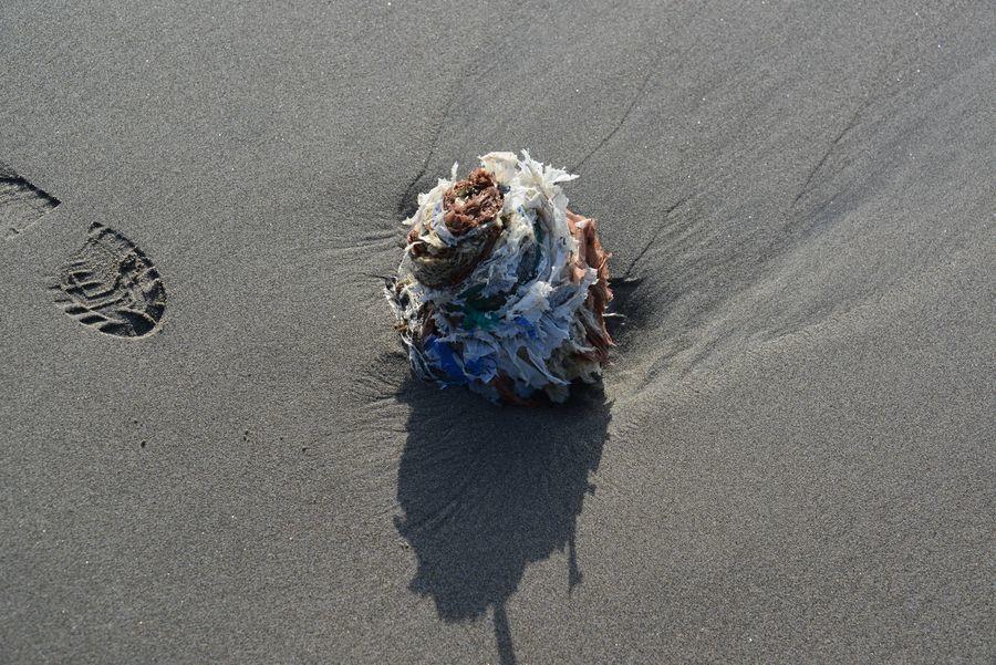 砂浜にて-5