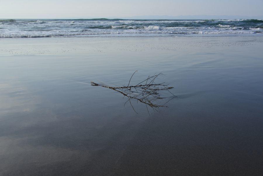 浜辺に-1