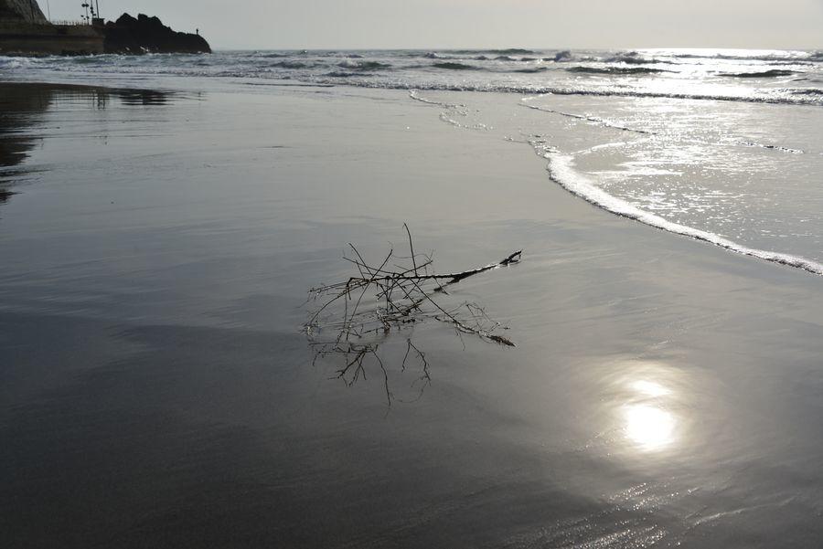 浜辺に-4