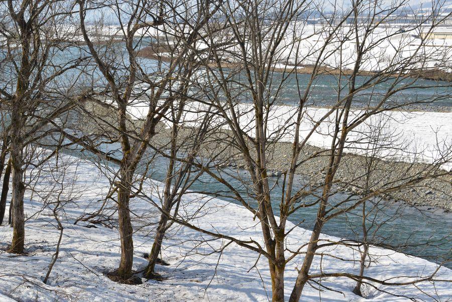 雪解け 魚野川-5