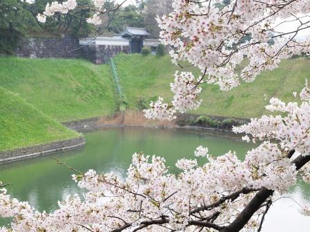 櫻田門2011,4,10