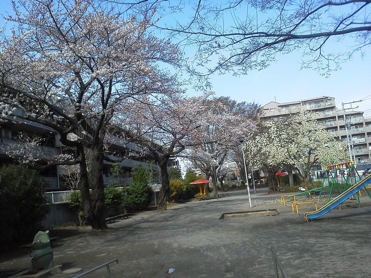 F1000070北浦公園3月24日