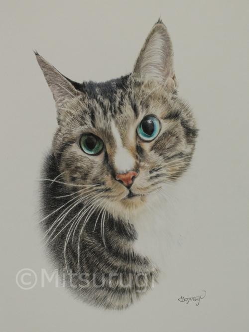 絵 イラスト ポートレート 肖像画 猫 A4