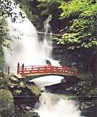 犬鳴山瀧と橋