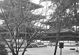 法隆寺塔と金堂部分