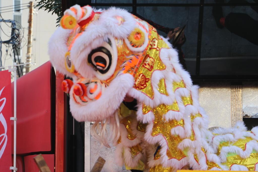 横濱中華學院校友会の獅子舞(3)_10