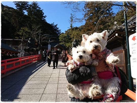 kiyoshikoujin3.jpg