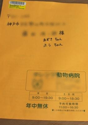 SST_6908.jpg