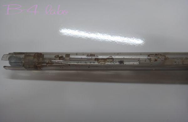 1801195.jpg