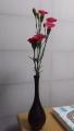 180317娘が卒業式でもらったお花を持ち帰る