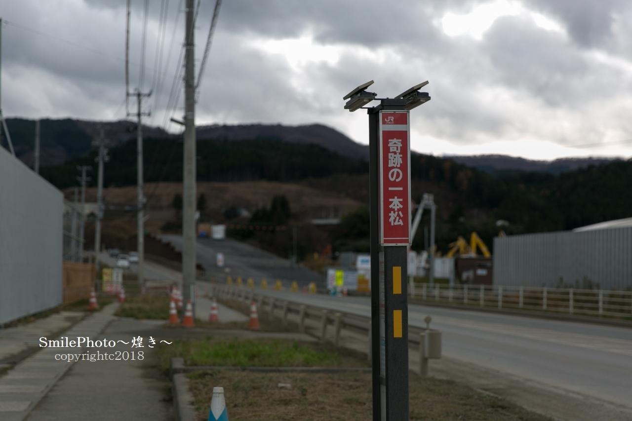 9T4A4380.jpg