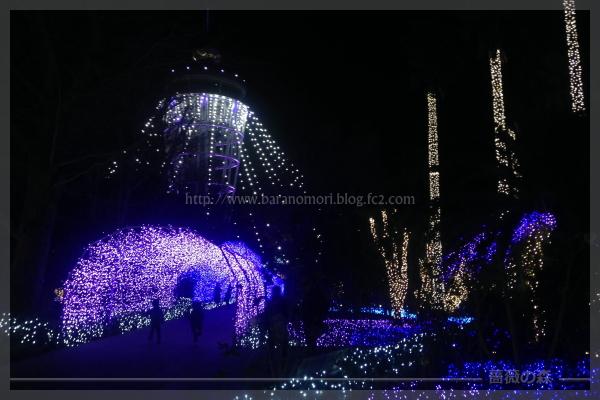 江の島 イルミネーション 20171230