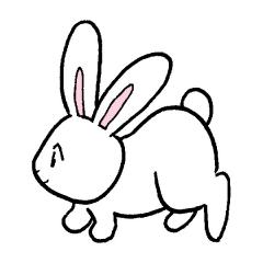 うさぎ ウサギ