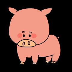 豚 ブタ 動物
