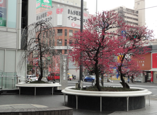 上本町で②