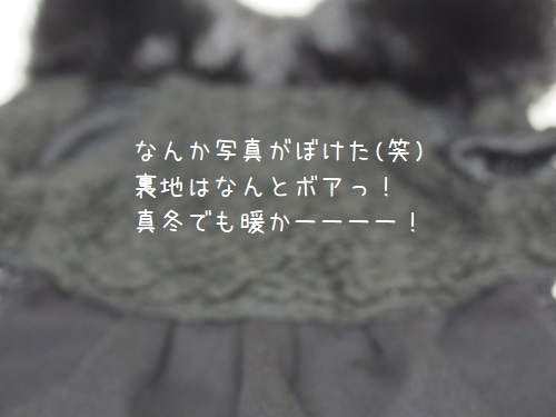 P3260023.jpg