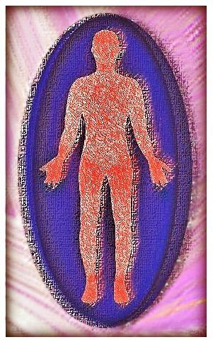 ●全身血管
