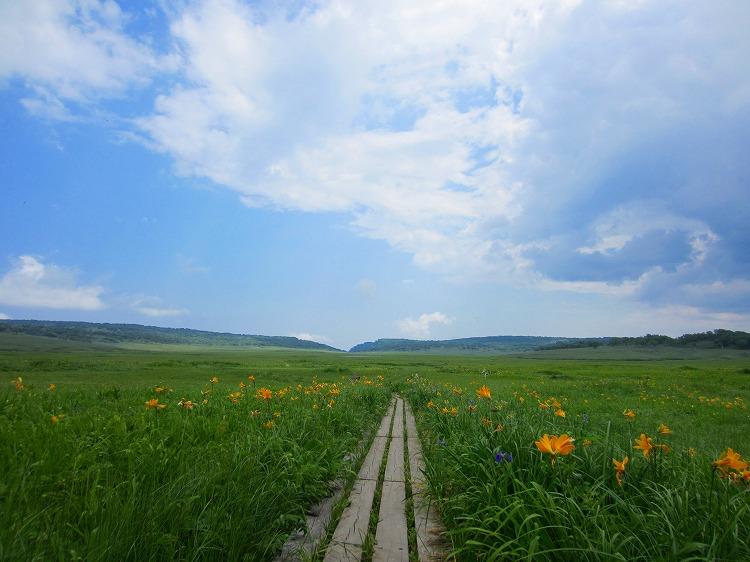 北海道の旅 20日目-2 雨竜沼湿原