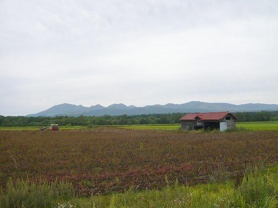 2009年 北海道 車中泊の旅 106日目 糠平温泉~帯広市街