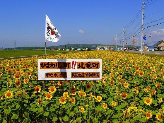 2009年 北海道 車中泊の旅 87日目 北竜町ひまわりの里~羽幌町