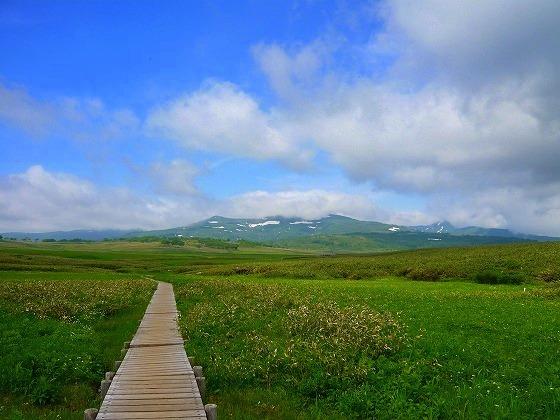 北海道 旅行 車中泊の旅 51日目-1 雨竜沼湿原