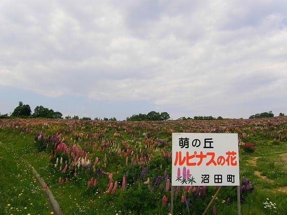 北海道 一周 一人旅 41日目 萌の丘~みさき台公園オートキャンプ場