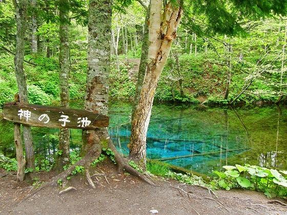2009 北海道 一周 車中泊の旅 23日目-1 開陽台~裏摩周展望台~神の子池