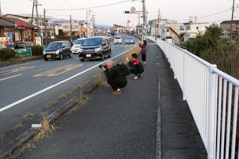 歩道に並ぶ