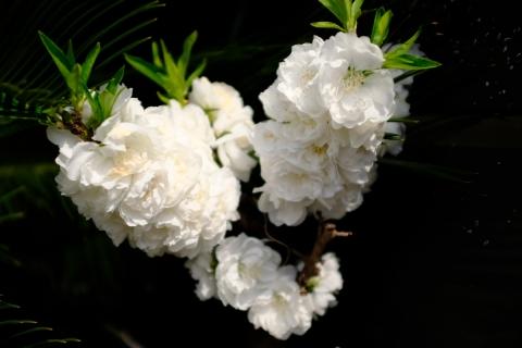 04北鎌倉