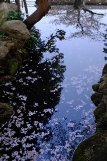 12円覚寺前の池