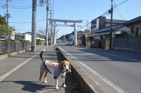 20180219香取神宮01