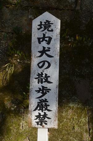 20180219香取神宮50