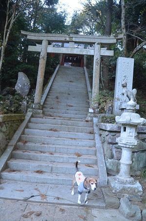 20180219玉田神社08