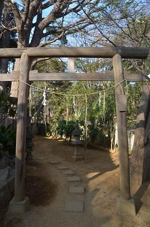 20180226厳島神社16