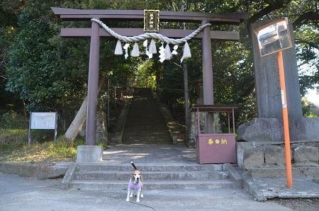20180304坂戸神社04