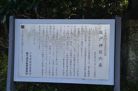 20180304坂戸神社10