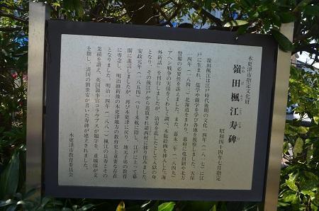 20180304八劔八幡神社16