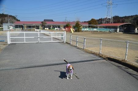 20180304吉野田小学校02