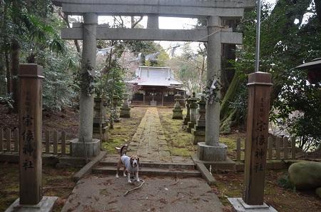 20180307宗像神社07